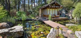 outdoor living spaces patio forest asian japanese pond water lilies asian zen garden