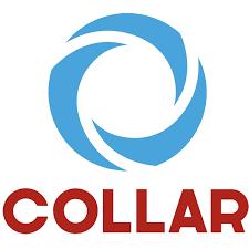 <b>COLLAR</b> (КОЛЛАР) кожаная амуниция для домашних животных ...