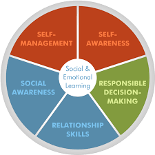 what are behavioural skills training what are behavioural skills