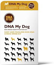 Dna My Dog - Canine Breed Identification Test Kit - at ... - Amazon.com
