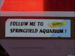 Image result for troy mcclure fish