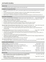 resume template blank simple curriculum vitae format resume