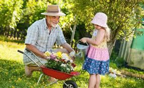 Купить <b>семена ампельной петунии</b> в Новосибирске в интернет ...