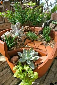 garden plants beautiful garden ideas succulent arrange arrange cool