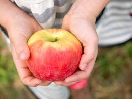 7 Special Ways to Celebrate the Autumn Equinox with Kids ...
