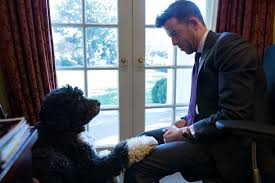 president obamas gay anticipator in chief has large role in oval office queerty barak obama oval office golds