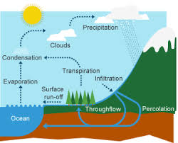 bbc bitesize   ks geography   the water cycle and river    diagram of the water cycle