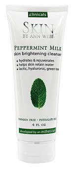 Skin by Ann Webb <b>Skin Brightening Cleanser Peppermint</b> Milk -- 4 fl oz