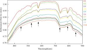 quantitative estimation of concentrations of dissolved rare earth the spectra of 10 samples that are listed from high to low according to the concentrations