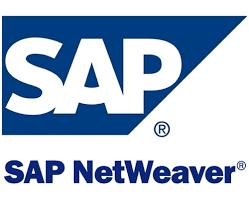 sap netweaver logo ile ilgili görsel sonucu