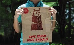 save wild life essay free essays on save wildlife   brainiacom