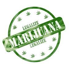 states     legalization of marijuana essay   current events essays    an essay on states     legalization of marijuana a
