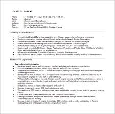 seo executive resume template –    free word  excel  pdf format    seo specialist resume word free download