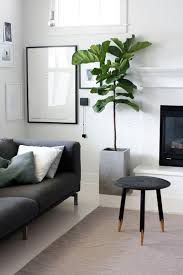 room plants x: this mornings living room via bloglovincom