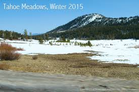 drought in the west a photographic essay tahoe meadows tamarac