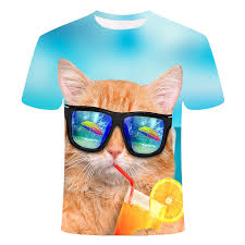 best top <b>glasses</b> cat <b>summer</b> near me and get free shipping - a534