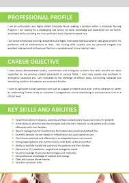 professional skills in resume example resume writing resume professional skills in resume example high school student resume example we can help professional resume