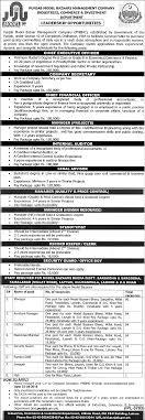 model bazaars jobs 2016 application forms last date punjab model bazaars jobs 2016 application forms last date