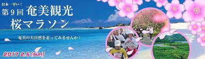 「奄美 桜マラソン」の画像検索結果