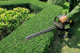 landscaper job description salary and education