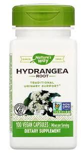 Nature's Way, <b>Hydrangea Root</b>, <b>740</b> mg, 100 Vegan Capsules ...