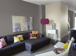 Paint Colours Living Room Decoration Grey Paint Living Room Gray Paint Colors Living Room