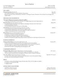 Breakupus Pleasant Chronological Resume Sample Administrative
