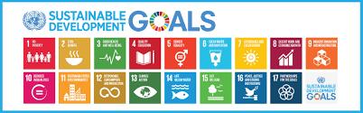 corporate volunteering rural aid un sustainable development goals