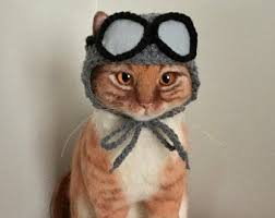 <b>Halloween</b> cat <b>hat</b> | Etsy