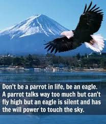 Image result for image of an eagle flying high in the sky