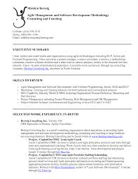 software development resume agile software development resume 2055