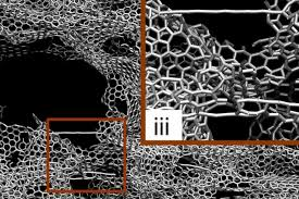 Researchers design one of the <b>strongest</b>, lightest materials known ...