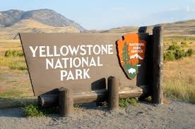 「yellowstone national park」の画像検索結果