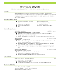 Resume Profile Examples Sample Job Application Letter