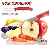 <b>Нож для томатов</b>