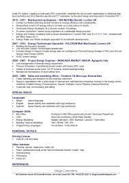 resume project manager samples template  project manager resume     Resume Examples Examples Of It Resumes  Best Project Manager Resume  Experience     Resume