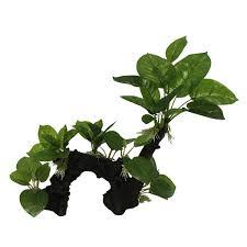 Декорации для <b>аквариумов Мейджинг Аквариум</b>: растения, <b>гроты</b> ...