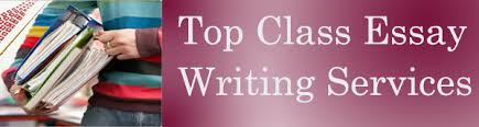 No Plagiarism Guarantee   Best Essay Writing Service