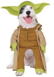 <b>Cat</b> & <b>Dog Pet</b> Halloween Costumes