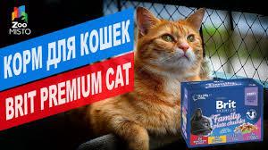 Корм для кошек <b>Brit Premium Cat</b>