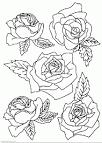 Розы картинки для раскраски