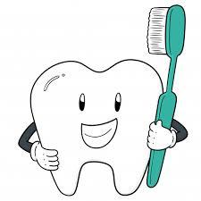 Вектор зуба и <b>зубной щетки</b> | Премиум векторы