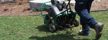 Image result for lawn aerator
