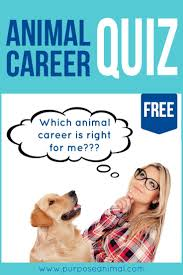 what career should i pursue quiz cars mmogspot 17 best ideas about career quiz on assertive