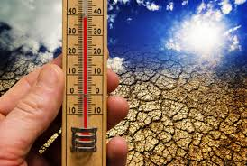 Resultado de imagem para aquecimento global fotos