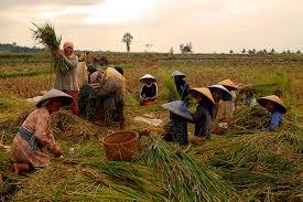 Kegiatan Ekonomi Penduduk Indonesia Lengkap