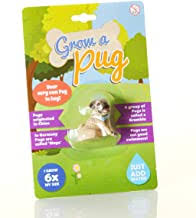 Pug Gifts for Pug Lovers - Amazon.co.uk