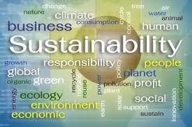 sustainable development goals to meet global development sustainable development