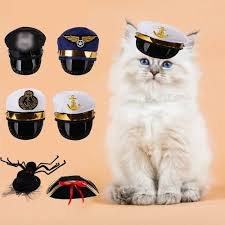 Generic <b>Pet</b> Halloween <b>Costumes</b> Cat Hat <b>Dog</b> Hat <b>Pet Cosplay</b> ...
