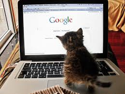is google making us stupid essay carr   mfacourseswebfccom is google making us stupid essay example  topics sample papers
